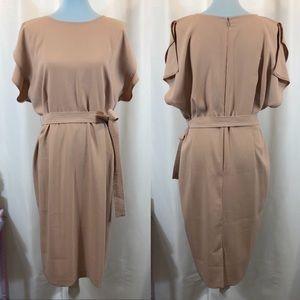 ASOS Nude/Blush Split Sleeve Dress